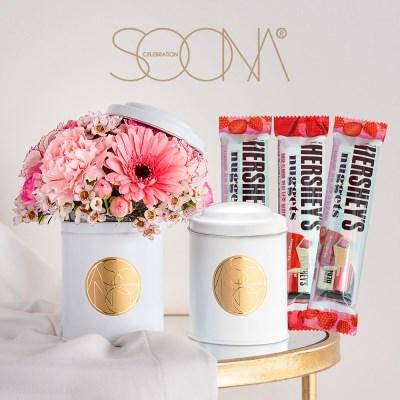화이트데이 더블틴 플라워(생화)+장미향 초콜릿 3종 세트 [전국택배]