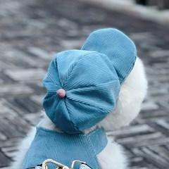 코듀로이 레이스 모자 - 블루