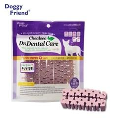 강아지 입냄새 먹는 양치 유산균 100g 치아 관리 애견