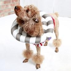 강아지 고양이 도넛 넥카라 깔대기 목보호대