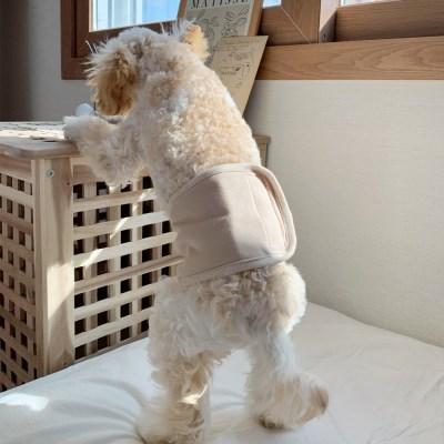 개달당 핸드메이드 오가닉 강아지 매너벨트 수컷기저귀 면매너벨트
