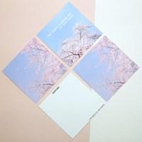 [제미포티] 벚꽃 사진 미니엽서 2종