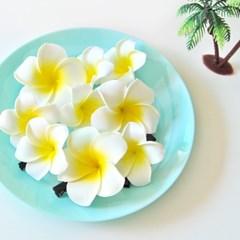 플루메리아 하와이안 꽃핀(2종)