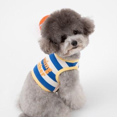 [mungmoong] 위닝 캐쳐 크롭 티셔츠 블루