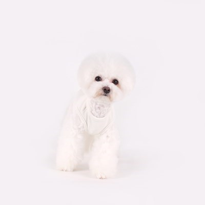 [T.코튼 티셔츠]Cotton T_White