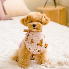 베이비베어 강아지 고양이 스카프 3color 키키앤니니