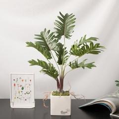 셀렘루트화분set 50cmP 조화 식물 인테리어 FMFUFT