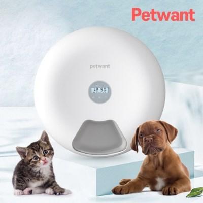 펫원트 강아지 고양이 자동급식기 자율배식기 급여기