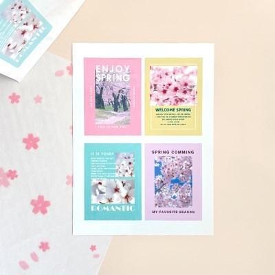 [소행섬] 체리블라썸 포스터 스티커