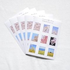 [메리필름] 봄꽃 감성 우표 스티커 5장 1set