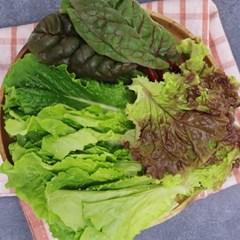충주 유만종 농부 친환경 쌈채소 1kg