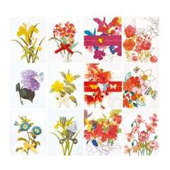 리본 꽃 미니카드 FT5050(12종)