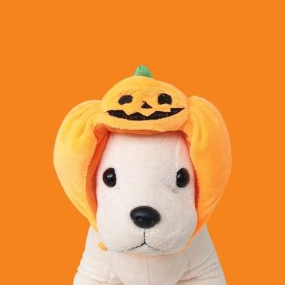 도그웨그 호박 모자 강아지 고양이 할로윈 코스튬