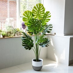 몬스테라 조화나무 180cm 인테리어 대형 인조식물화분