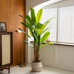 바나나 조화나무 2M 인테리어 대형 인조식물화분