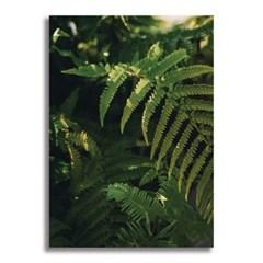 [크롭크롭] Botanical Poster #1 (A2)
