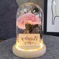 핑크 카네이션 LED 무드등 어버이날 부모님 선물 장식