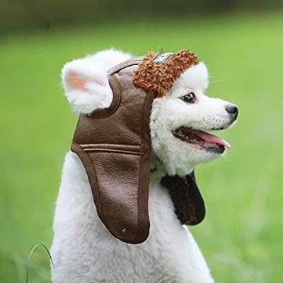 펫발란스3000 비행 라이더 강아지 모자