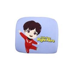 BTS타이니탄 메모리폼등쿠션제이홉C83661