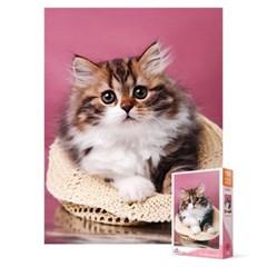 150피스 직소퍼즐 - 아기 고양이
