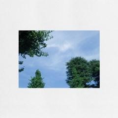 Forest (숲) / A4 감성 미니포스터