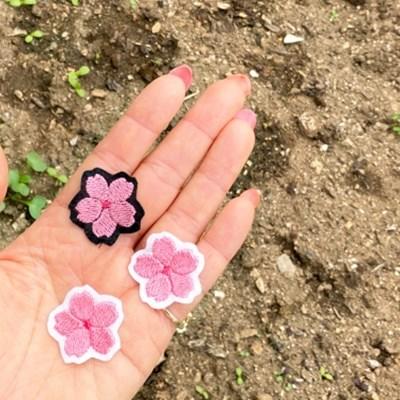 벚꽃 미니 브로치
