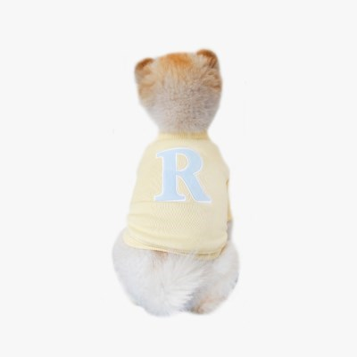 'R' 맨투맨 콘 옐로우 ('R' MTM CORN YELLOW)