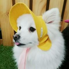 노랭이 바나썬캡 강아지 고양이 썬캡 모자 아소비진
