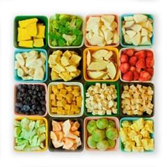 강아지 동결건조 간식 야채 과일 육류 어류 아띠트릿