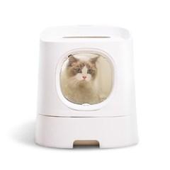 손담비 고양이 화장실 퍼스트클래식 베이직에디션 캣똥