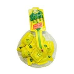 피오디 레몬 48ml