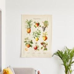 [모던하우스] 그라피크 열대과일 식물도감 패브릭포스터