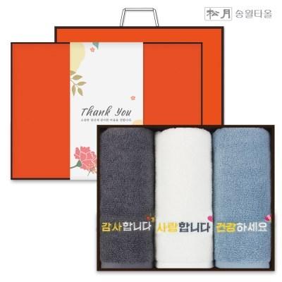 송월타올 가정의달 스승의날 수건선물세트 3P+감사장_(602867193)