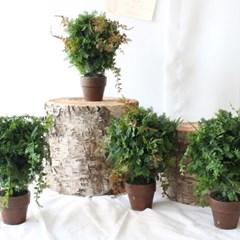 작은 나무 조화 토피어리