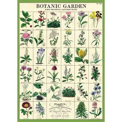 카발리니 포스터-Botanic Garden