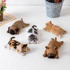 엎드린 강아지 고양이 장식 자석 5type