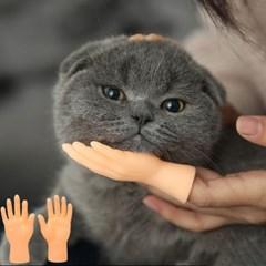 냥케어 고양이장난감 핑거마사지기 집사필수 좌우5set
