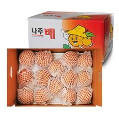 [남도장터] 가정용 나주배 3kg (4-5과)