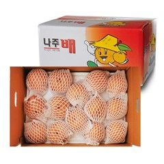 [남도장터] 특품 나주배 3kg (4-5과)