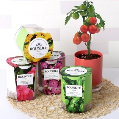 [꿈쟁이] 원형화분 라운디 8종 씨앗 심기 식물 키우기