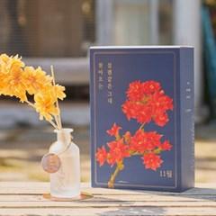 월간생일화지음 Ver.02-11월의꽃 칼랑코에 생일화 알러지프리 디퓨