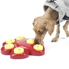 강아지노즈워크 후각놀이 지능발달 애견용품 강아지훈련