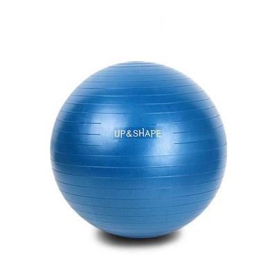 업앤쉐이프 중량짐볼 55cm(블루)