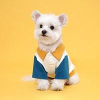 플로트 콤비피케티셔츠 강아지옷 아이보리