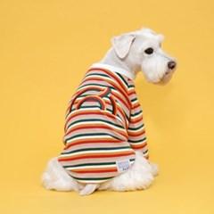 플로트 레인보우스트라이프티셔츠 강아지옷 화이트