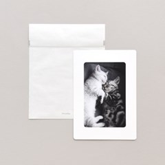 반투명 종이봉투 M 100매 - 4x6 종이액자용