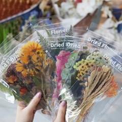 꽃 플라워 압화 드라이플라워 스티커 다이어리꾸미기 8종