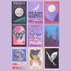 Moonrise Moment - Postcard Series & Set (10type)