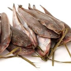 국산 반건조 장대 양태 2미(40cm330g내외) 생선