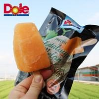 돌코리아 달콤한 애플망고바 칸탈루프멜론바 80g 10개입 과일 아이스
